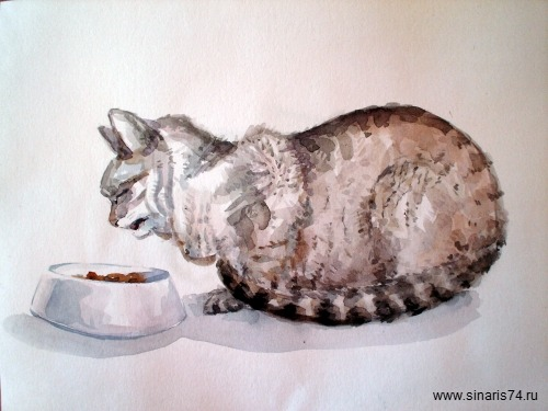 drawing, watercolor, A Cat, cat eats from a bowl