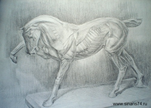 drawing, watercolor, Training pattern, the horse, plaster sculpture of a horse