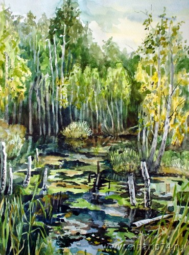 drawing, watercolor, Swamp in the forest, swamp, forest