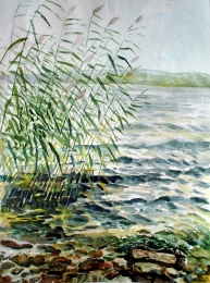 drawing, watercolor, Reed, beach, lake, rocks