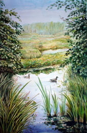drawing, watercolor, Ducks, creek, grass, leaves, sky, forest