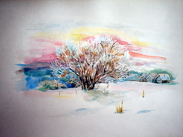 drawing, watercolor, Winter etude, bush, village