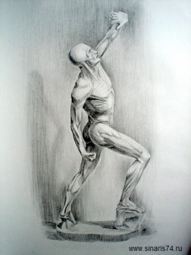 drawing, watercolor, Academic drawing, man, Spartan without weapons, sculptures, plaster