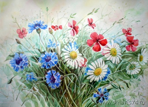drawing, watercolor, Wild flowers, bouquet, daisies, flowers