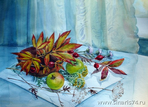 drawing, watercolor, Apples, apples, branches, berries, fennel