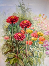 drawing, watercolor, Zinnias, flowers, leaves
