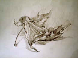 drawing, watercolor, Autumn etude, a dried oak leaf