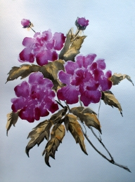 drawing, watercolor, Peonies, flowers, leaves, branch