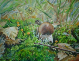 drawing, watercolor, Fortress-boletus. In the moss, Mushroom in the woods