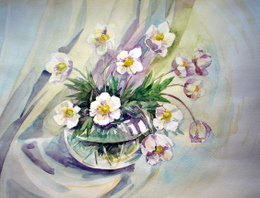drawing, watercolor, Anemóne sylvéstris, bouquet flowers