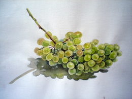 drawing, watercolor, Green grapes, branch of green grapes